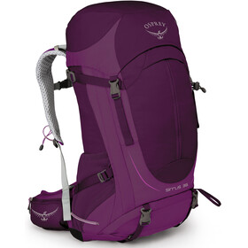 Osprey Sirrus 36 Backpack Women Ruska Purple